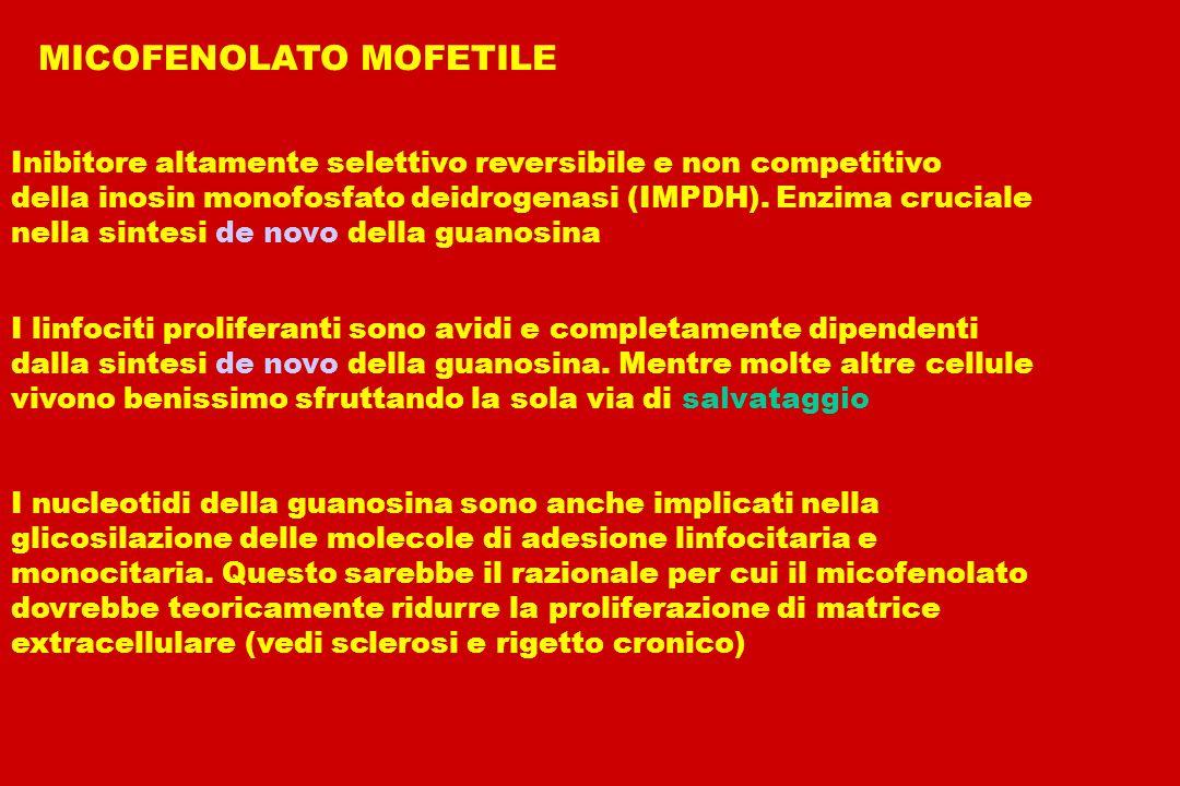 MICOFENOLATO MOFETILE MICOFENOLATO MOFETILE