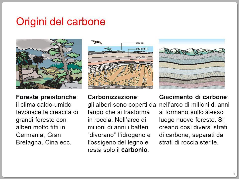 4 Origini del carbone Foreste preistoriche: il clima caldo-umido favorisce la crescita di grandi foreste con alberi molto fitti in Germania, Gran Bret