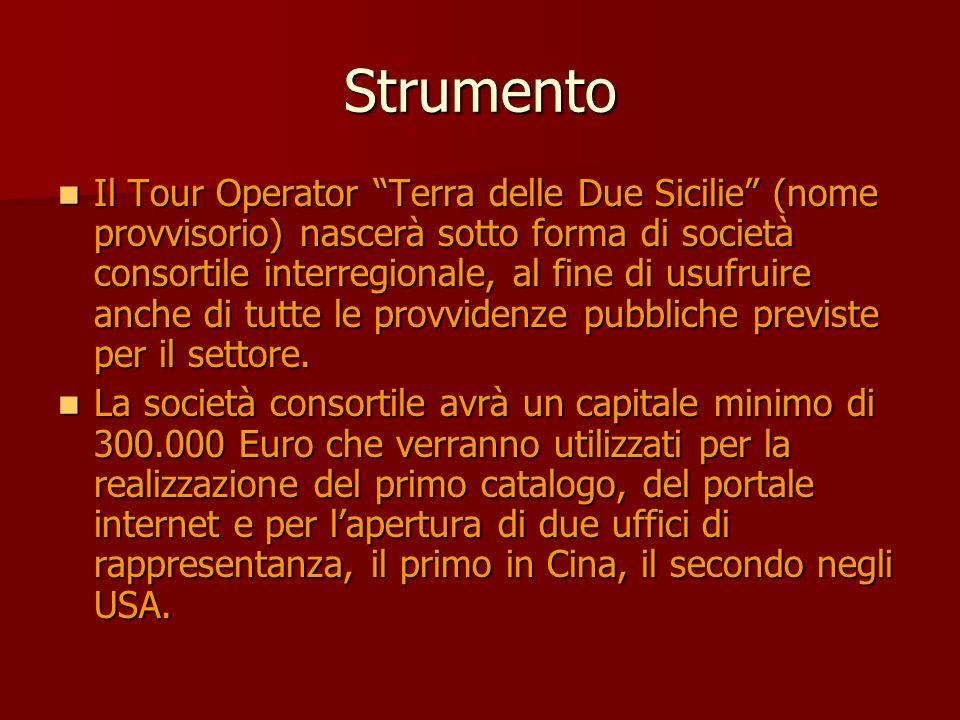 Strumento Il Tour Operator Terra delle Due Sicilie (nome provvisorio) nascerà sotto forma di società consortile interregionale, al fine di usufruire anche di tutte le provvidenze pubbliche previste per il settore.