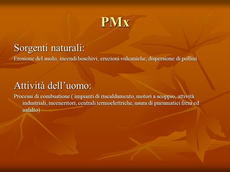 PMx Sorgenti naturali: Erosione del suolo, incendi boschivi, eruzioni vulcaniche, dispersione di pollini Attività delluomo: Processi di combustione (