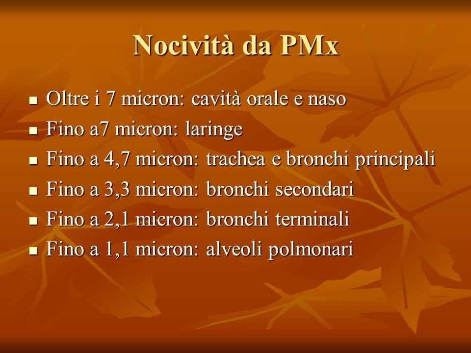 Nocività da PMx Oltre i 7 micron: cavità orale e naso Oltre i 7 micron: cavità orale e naso Fino a7 micron: laringe Fino a7 micron: laringe Fino a 4,7
