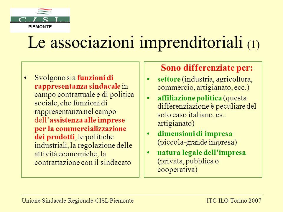 Unione Sindacale Regionale CISL PiemonteITC ILO Torino 2007 PIEMONTE Le associazioni imprenditoriali (1) Svolgono sia funzioni di rappresentanza sinda
