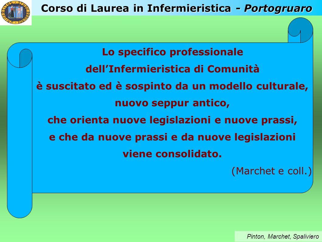 Corso di Laurea in Infermieristica - Portogruaro paliviero Pinton, Marchet, Spaliviero Lo specifico professionale dellInfermieristica di Comunità è su
