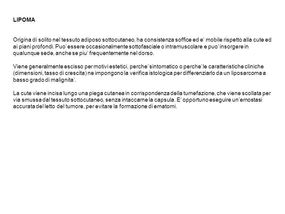 Interventi: plastica erniaria safenectomia asportazione cisti pilonidali ascessi e fistole chirurgia proctologica
