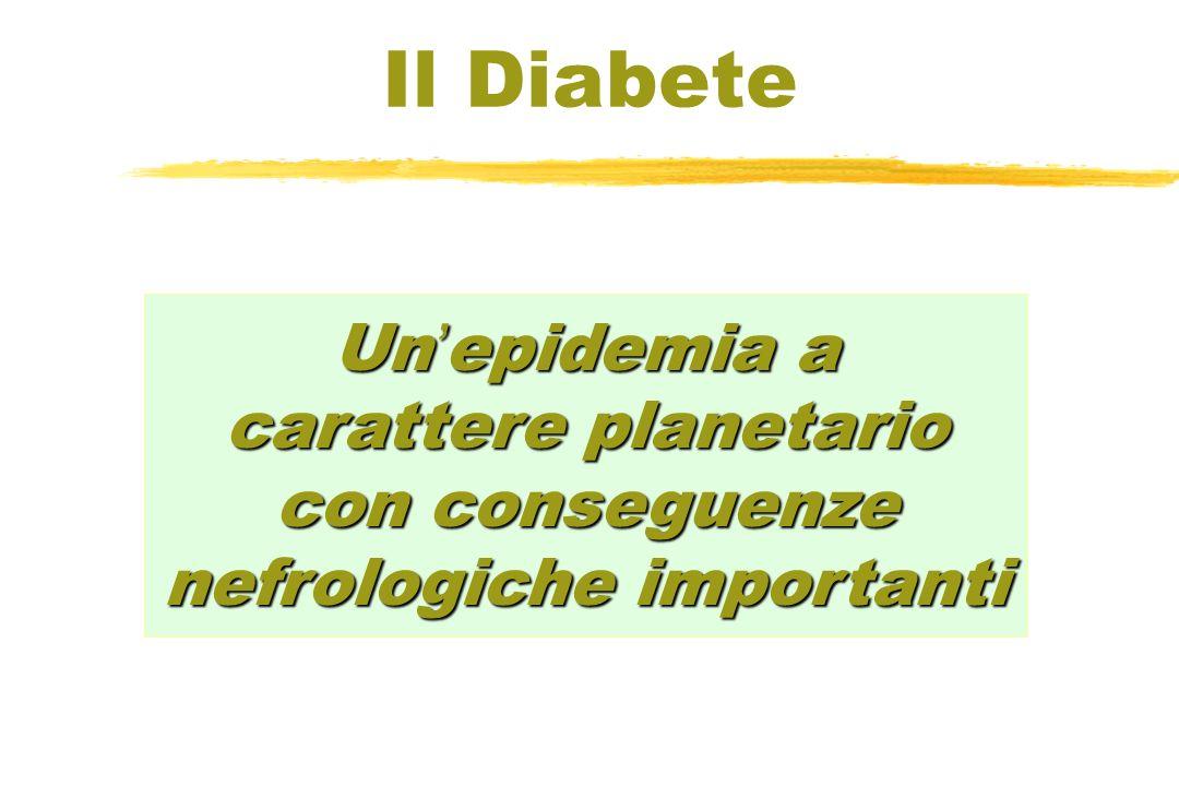 Un epidemia a carattere planetario con conseguenze nefrologiche importanti Il Diabete