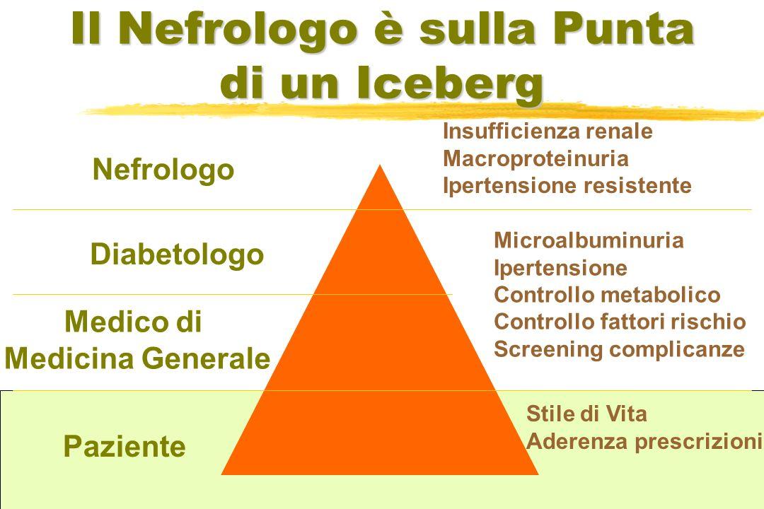 Il Nefrologo è sulla Punta di un Iceberg Nefrologo Diabetologo Medico di Medicina Generale Paziente Insufficienza renale Macroproteinuria Ipertensione