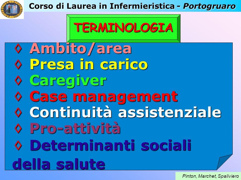 Corso di Laurea in Infermieristica - Portogruaro paliviero Pinton, Marchet, Spaliviero TERMINOLOGIA Ambito/area Ambito/area Presa in carico Presa in c