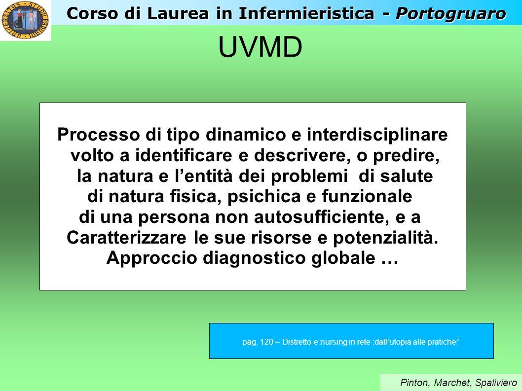 UVMD Processo di tipo dinamico e interdisciplinare volto a identificare e descrivere, o predire, la natura e lentità dei problemi di salute di natura
