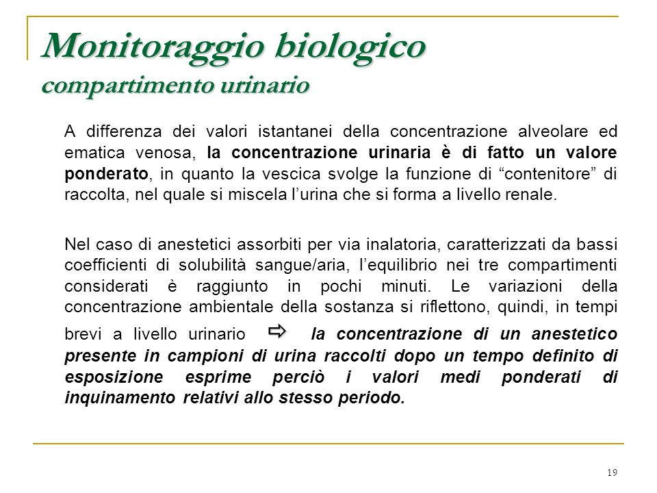 19 Monitoraggio biologico compartimento urinario A differenza dei valori istantanei della concentrazione alveolare ed ematica venosa, la concentrazion