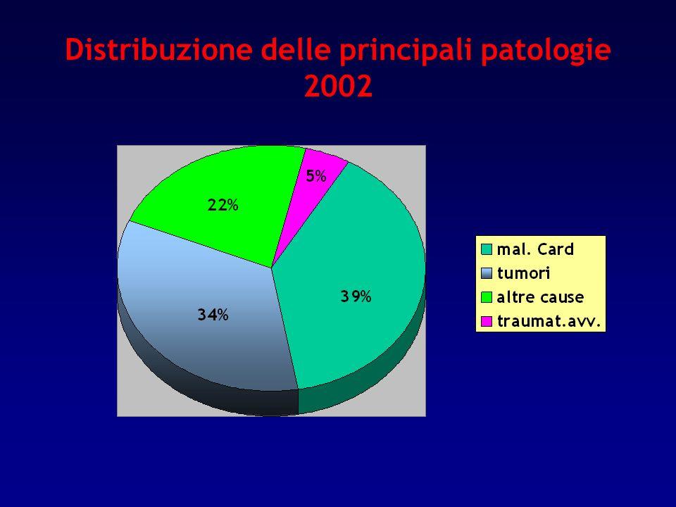 Distribuzione delle principali patologie 2002