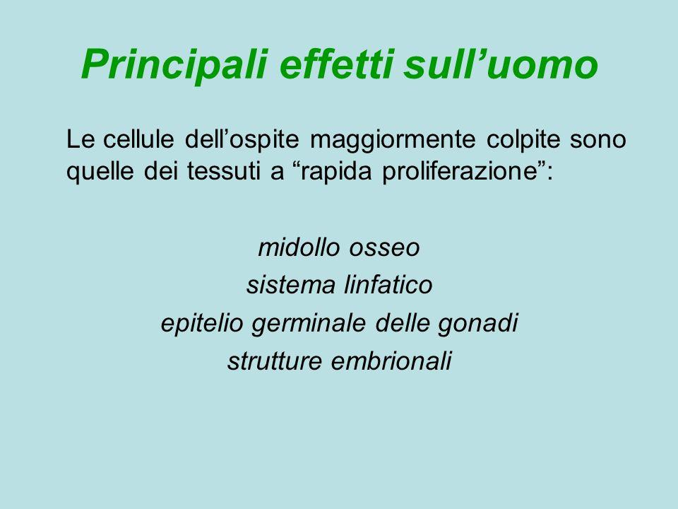 Valutazione dellesposizione personale Per valutare lentità dellesposizione in soggetti addetti alla manipolazione dei C.A.