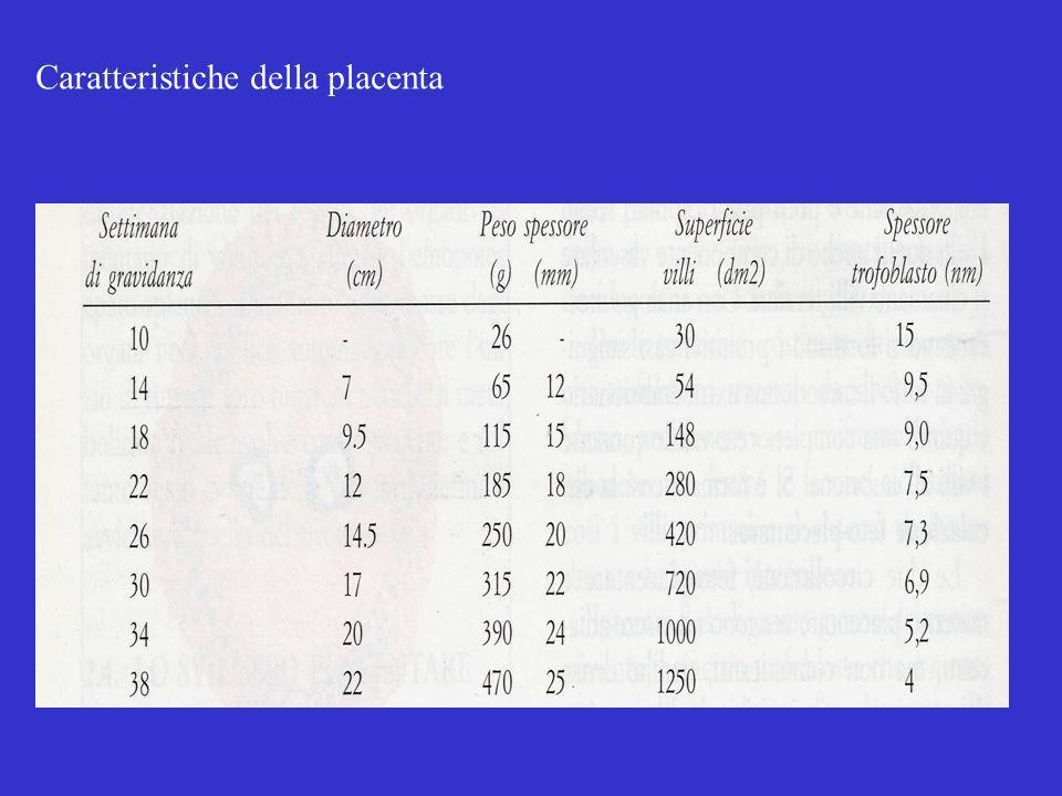 Caratteristiche della placenta