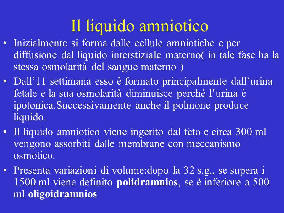 Il liquido amniotico Inizialmente si forma dalle cellule amniotiche e per diffusione dal liquido interstiziale materno( in tale fase ha la stessa osmo