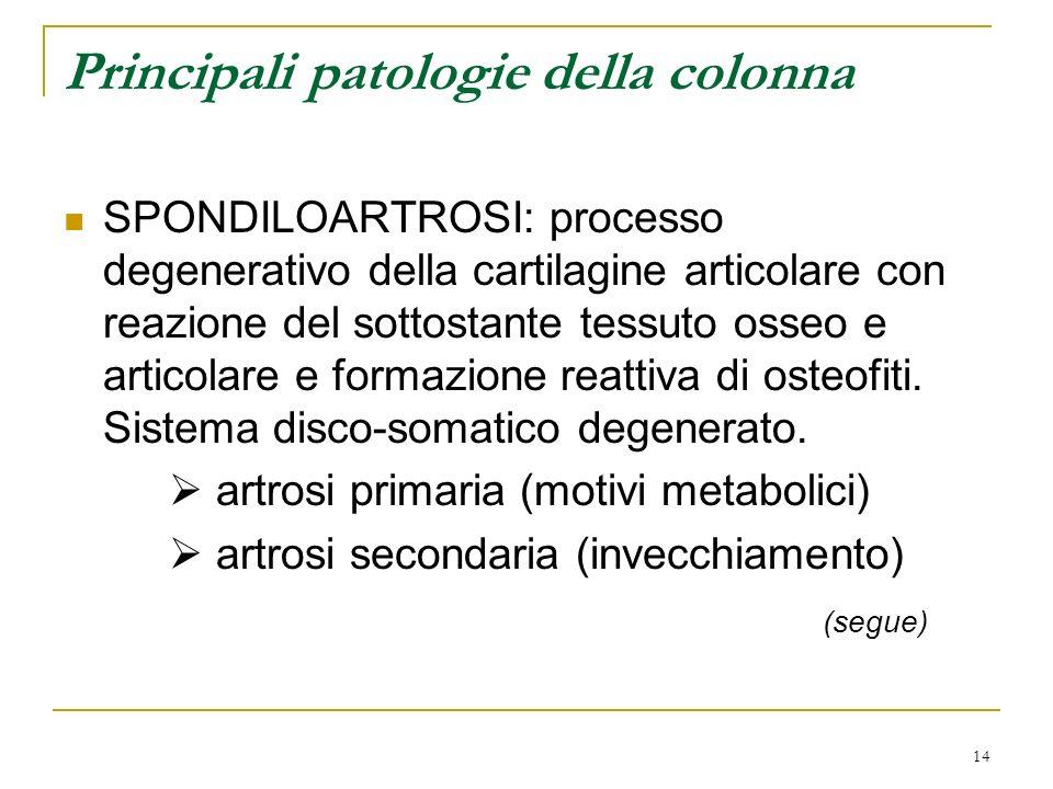 14 Principali patologie della colonna SPONDILOARTROSI: processo degenerativo della cartilagine articolare con reazione del sottostante tessuto osseo e