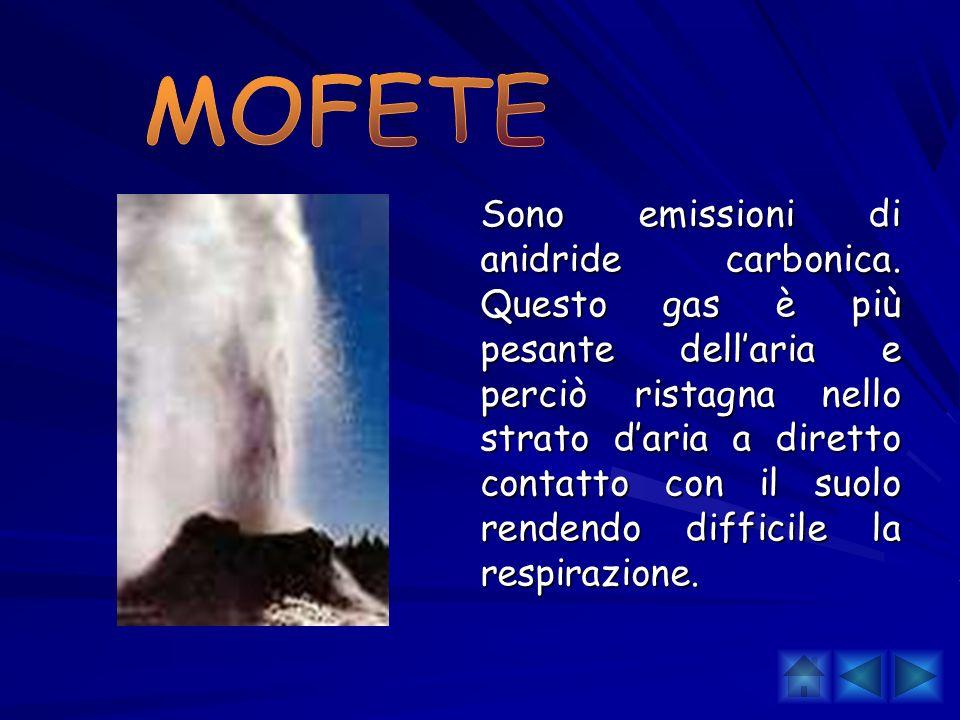 Sono emissioni di anidride carbonica. Questo gas è più pesante dellaria e perciò ristagna nello strato daria a diretto contatto con il suolo rendendo