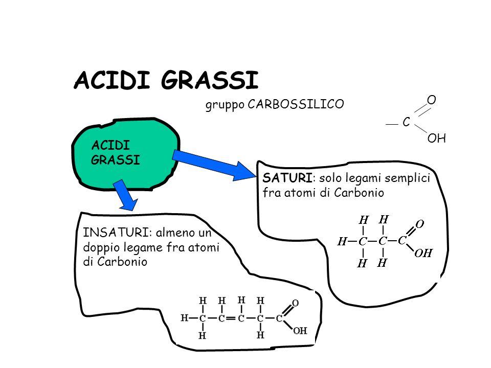 ACIDI GRASSI gruppo CARBOSSILICO C O OH ACIDI GRASSI SATURI: solo legami semplici fra atomi di Carbonio INSATURI: almeno un doppio legame fra atomi di