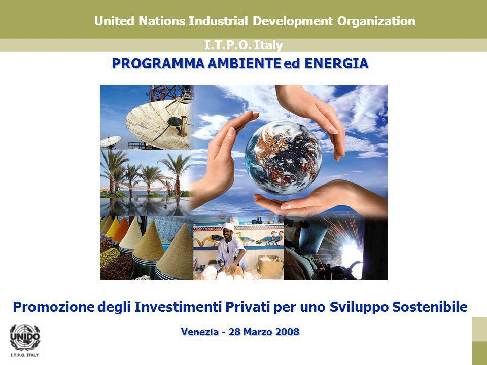 I.T.P.O. Italy United Nations Industrial Development Organization PROGRAMMA AMBIENTE ed ENERGIA Promozione degli Investimenti Privati per uno Sviluppo