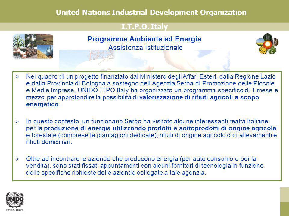 I.T.P.O. Italy United Nations Industrial Development Organization Programma Ambiente ed Energia Assistenza Istituzionale Nel quadro di un progetto fin