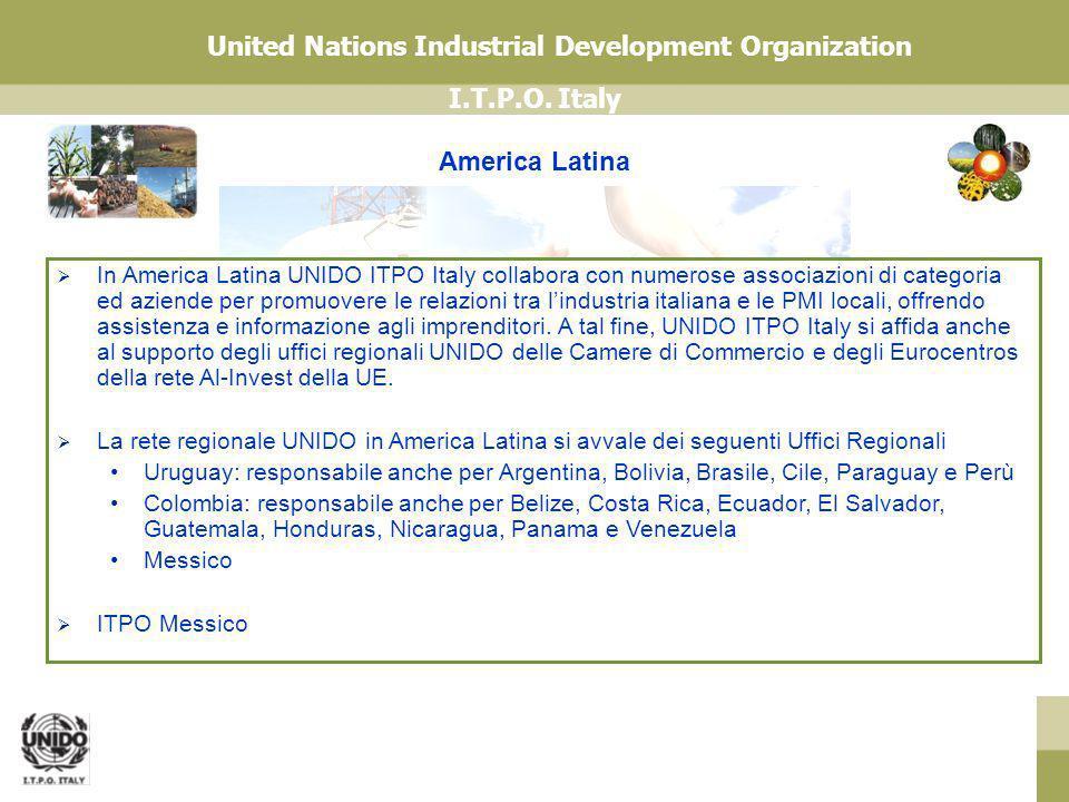 I.T.P.O. Italy United Nations Industrial Development Organization America Latina In America Latina UNIDO ITPO Italy collabora con numerose associazion