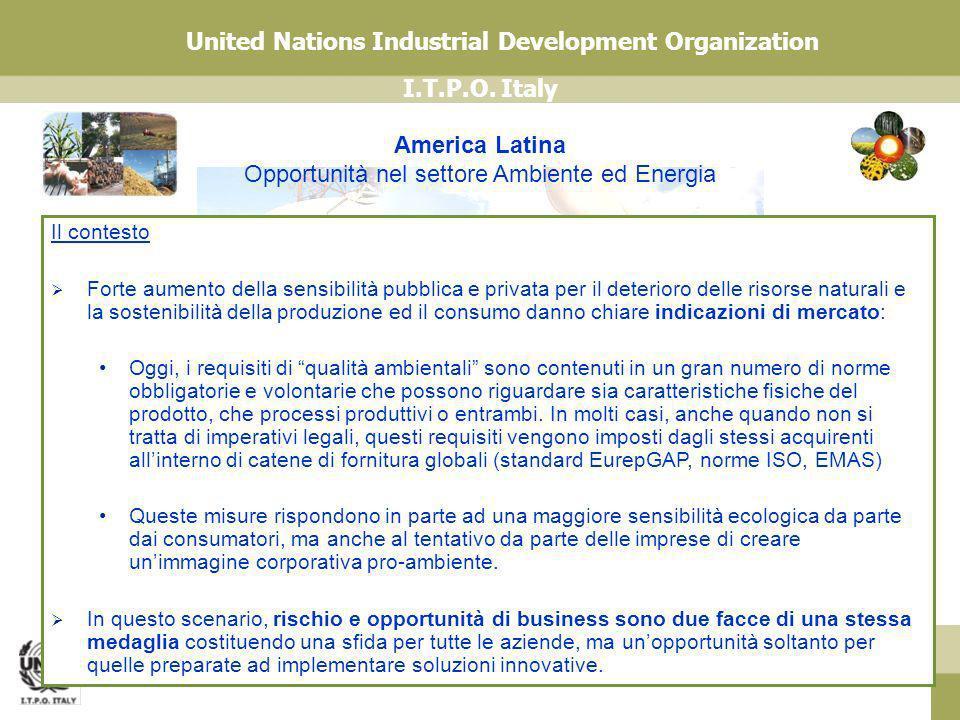 I.T.P.O. Italy United Nations Industrial Development Organization America Latina Opportunità nel settore Ambiente ed Energia Il contesto Forte aumento