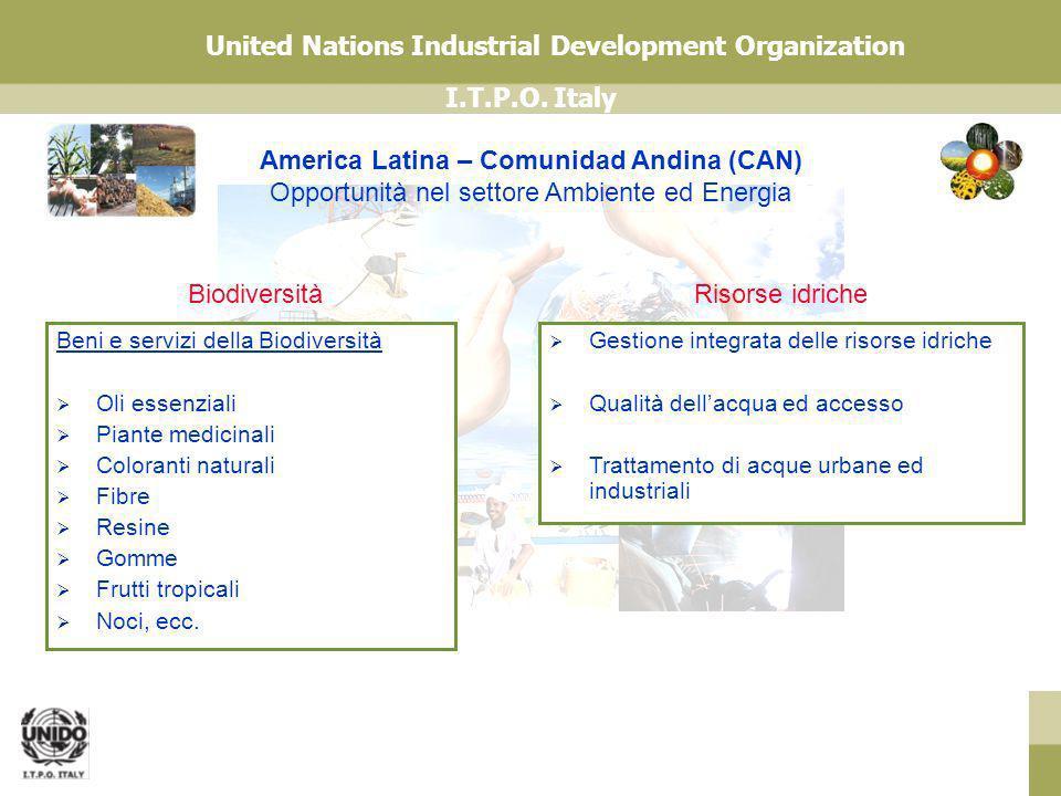 I.T.P.O. Italy United Nations Industrial Development Organization America Latina – Comunidad Andina (CAN) Opportunità nel settore Ambiente ed Energia