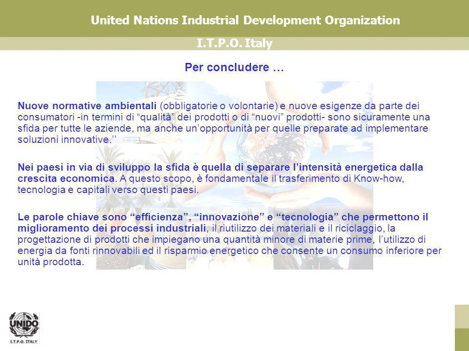 I.T.P.O. Italy United Nations Industrial Development Organization Nuove normative ambientali (obbligatorie o volontarie) e nuove esigenze da parte dei