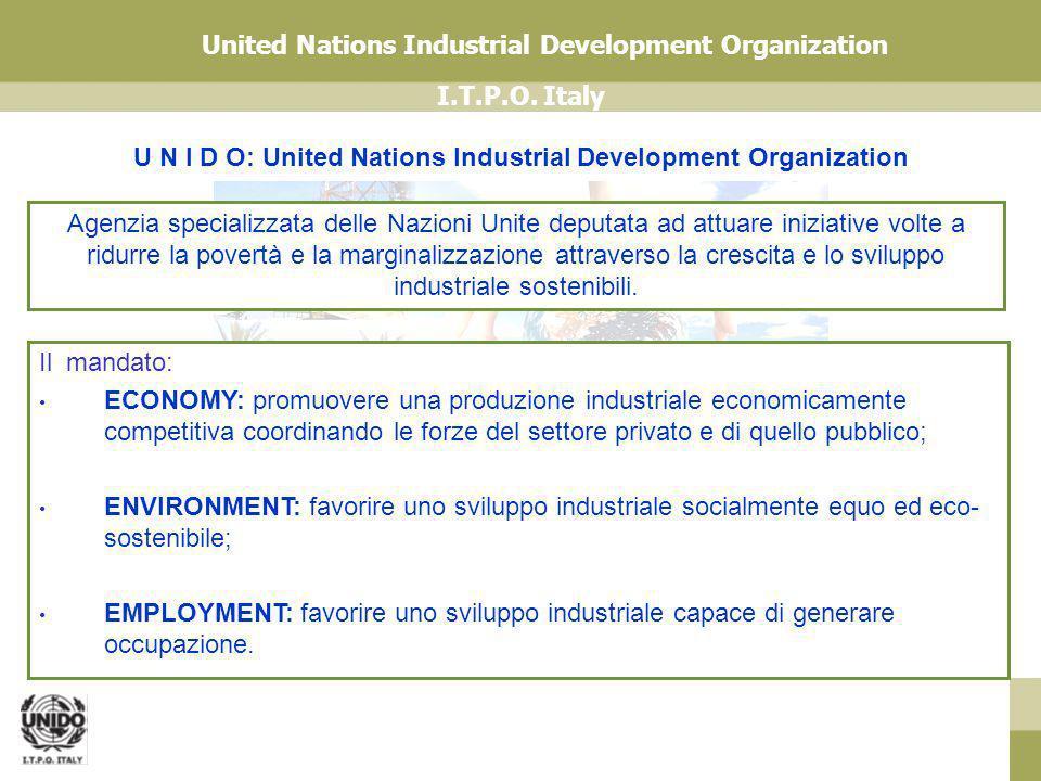 I.T.P.O. Italy United Nations Industrial Development Organization Daniel Rossi Il mandato: ECONOMY: promuovere una produzione industriale economicamen