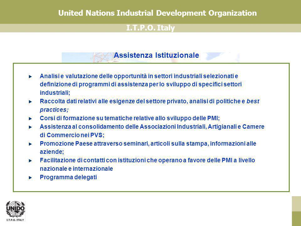 I.T.P.O. Italy United Nations Industrial Development Organization Analisi e valutazione delle opportunità in settori industriali selezionati e definiz