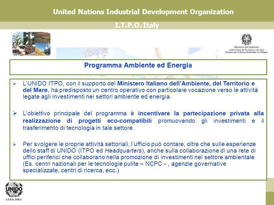 I.T.P.O. Italy United Nations Industrial Development Organization LUNIDO ITPO, con il supporto del Ministero Italiano dellAmbiente, del Territorio e d