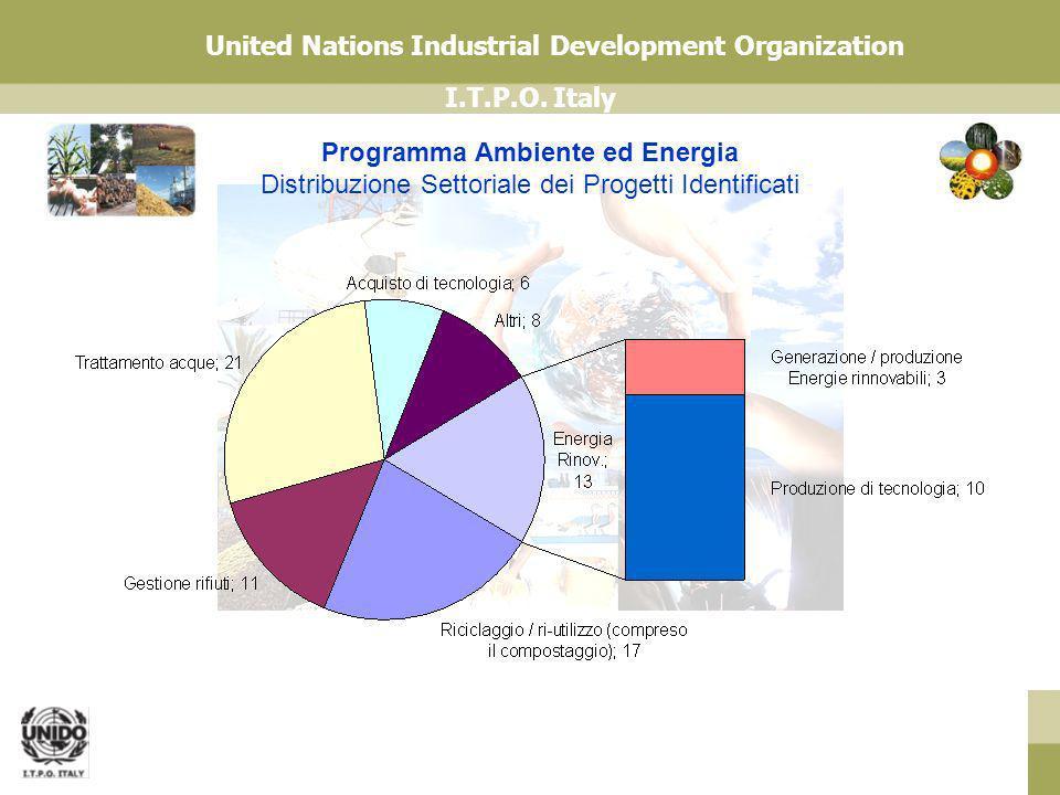 I.T.P.O. Italy United Nations Industrial Development Organization Programma Ambiente ed Energia Distribuzione Settoriale dei Progetti Identificati