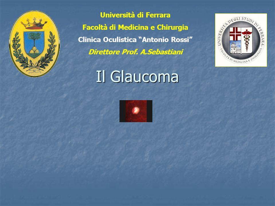 Il Glaucoma Università di Ferrara Facoltà di Medicina e Chirurgia Clinica Oculistica Antonio Rossi Direttore Prof. A.Sebastiani