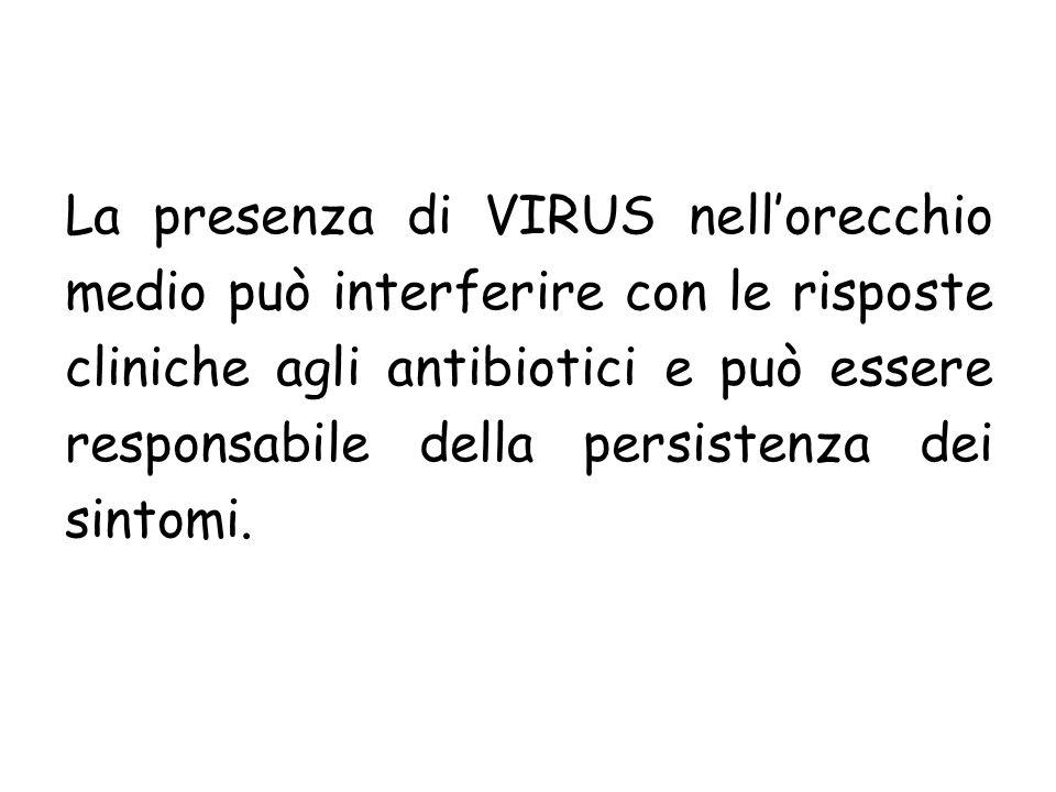 La presenza di VIRUS nellorecchio medio può interferire con le risposte cliniche agli antibiotici e può essere responsabile della persistenza dei sint