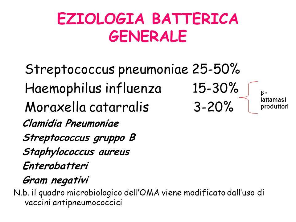 EZIOLOGIA BATTERICA GENERALE Streptococcus pneumoniae 25-50% Haemophilus influenza 15-30% Moraxella catarralis 3-20% Clamidia Pneumoniae Streptococcus