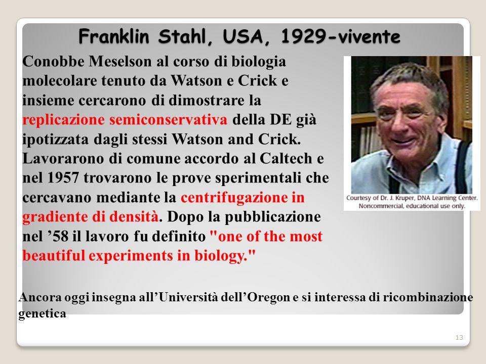 Franklin Stahl, USA, 1929-vivente 13 Conobbe Meselson al corso di biologia molecolare tenuto da Watson e Crick e insieme cercarono di dimostrare la re