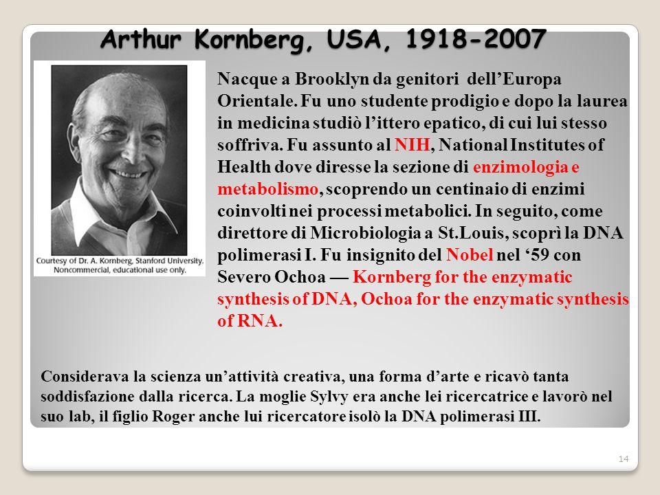 Arthur Kornberg, USA, 1918-2007 14 Nacque a Brooklyn da genitori dellEuropa Orientale. Fu uno studente prodigio e dopo la laurea in medicina studiò li