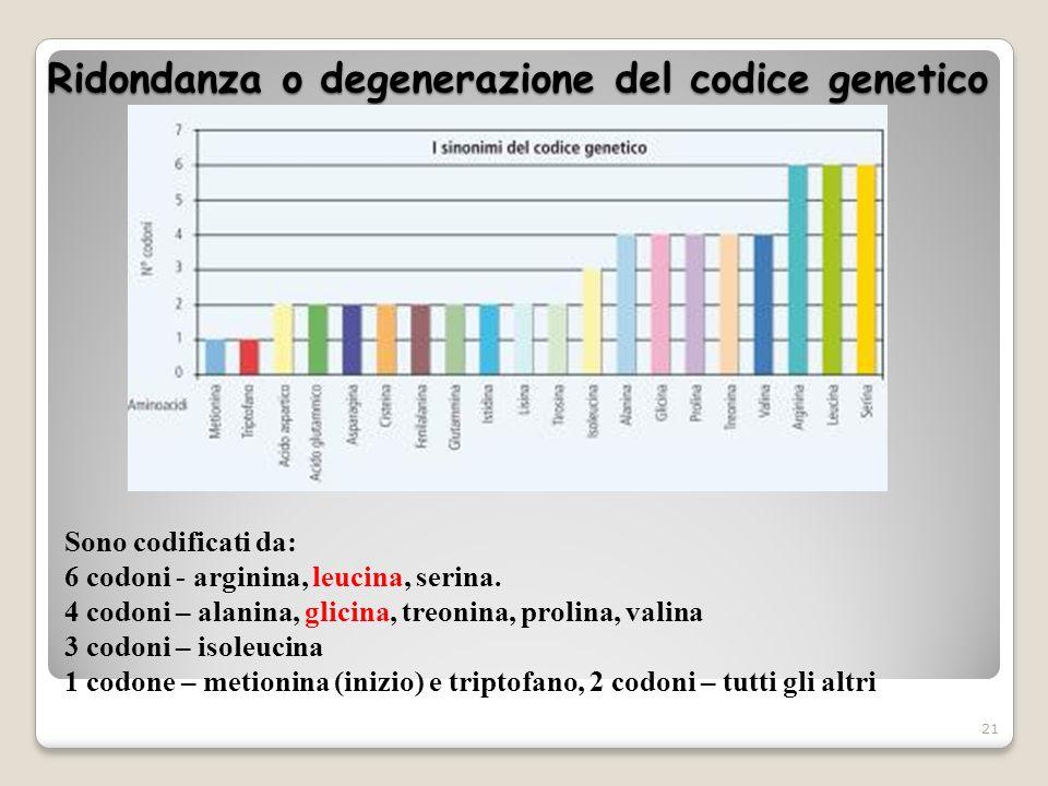 Ridondanza o degenerazione del codice genetico 21 Sono codificati da: 6 codoni - arginina, leucina, serina. 4 codoni – alanina, glicina, treonina, pro