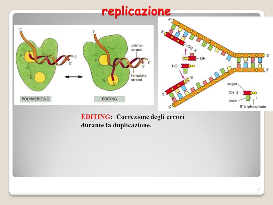 replicazione 6 EDITING: Correzione degli errori durante la duplicazione.