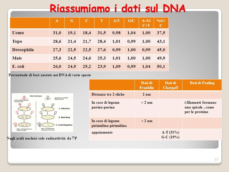 Riassumiamo i dati sul DNA 17 Percentuale di basi azotate nei DNA di varie specie Negli acidi nucleici solo radioattività da 32 P Dati di Franklin Dat