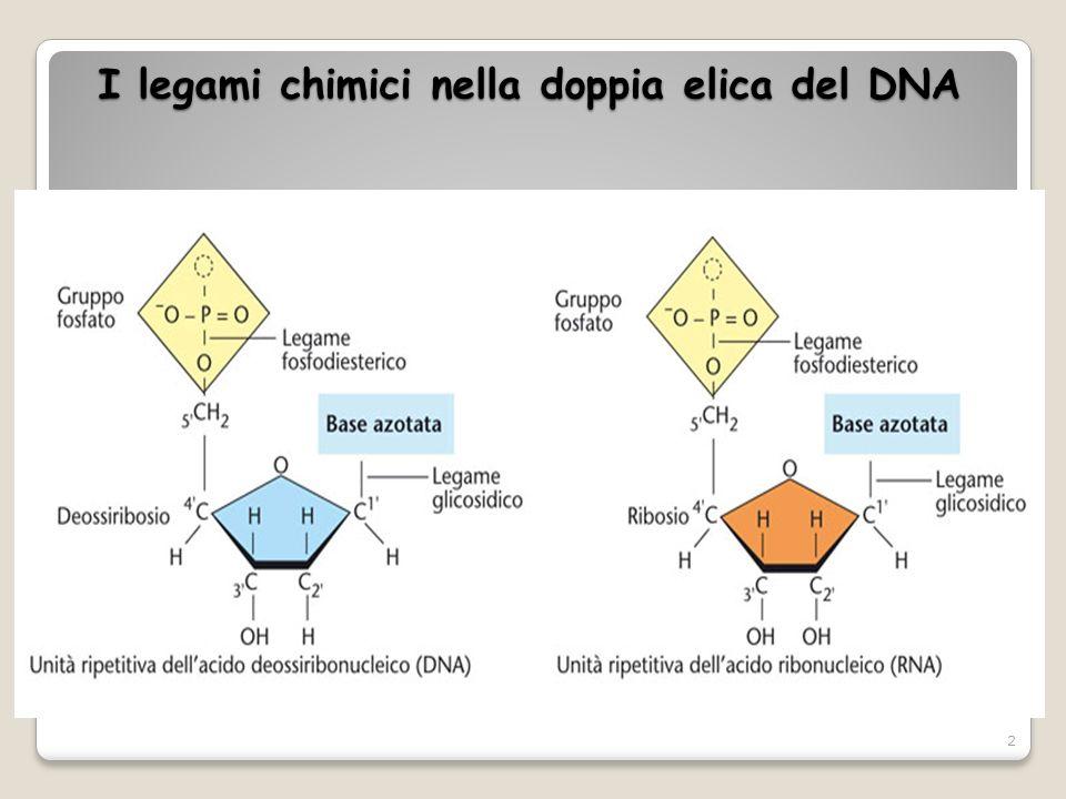 A livello molecolare le interazioni del DNA con le proteine istoniche sono dovute a vari tipi di legami: - legami idrogeno che si instaurano tra gruppi fosfato del DNA e i residui amminici degli istoni, - interazioni elettrostatiche con la catena basica laterale.