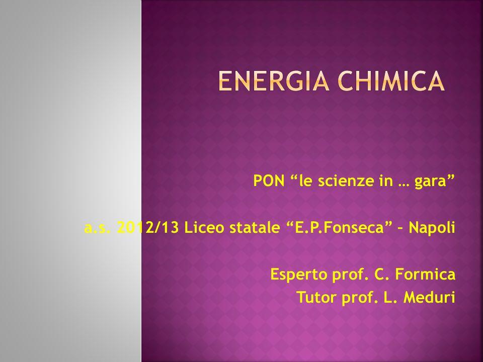 PON le scienze in … gara a.s. 2012/13 Liceo statale E.P.Fonseca – Napoli Esperto prof.