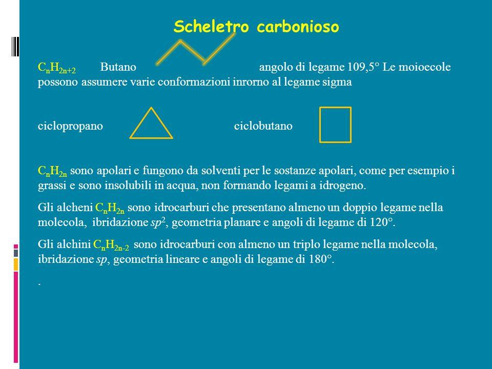 Scheletro carbonioso C n H 2n+2 Butano angolo di legame 109,5° Le moioecole possono assumere varie conformazioni inrorno al legame sigma ciclopropano ciclobutano C n H 2n sono apolari e fungono da solventi per le sostanze apolari, come per esempio i grassi e sono insolubili in acqua, non formando legami a idrogeno.