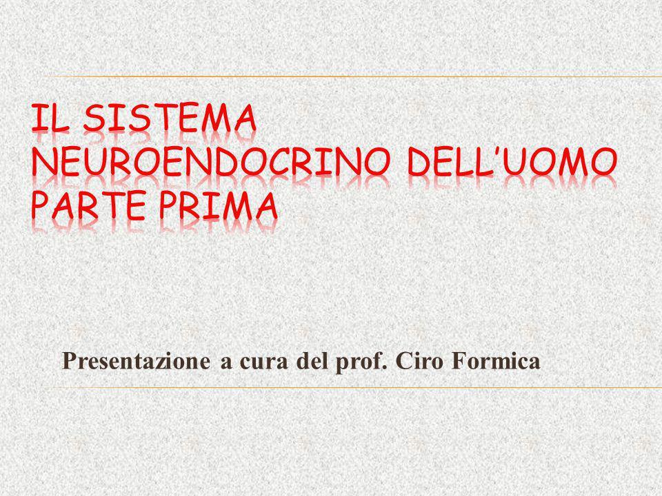 Presentazione a cura del prof. Ciro Formica