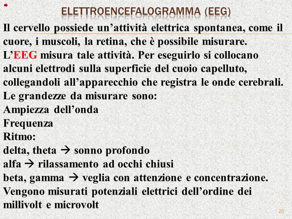 20 Il cervello possiede unattività elettrica spontanea, come il cuore, i muscoli, la retina, che è possibile misurare. LEEG misura tale attività. Per