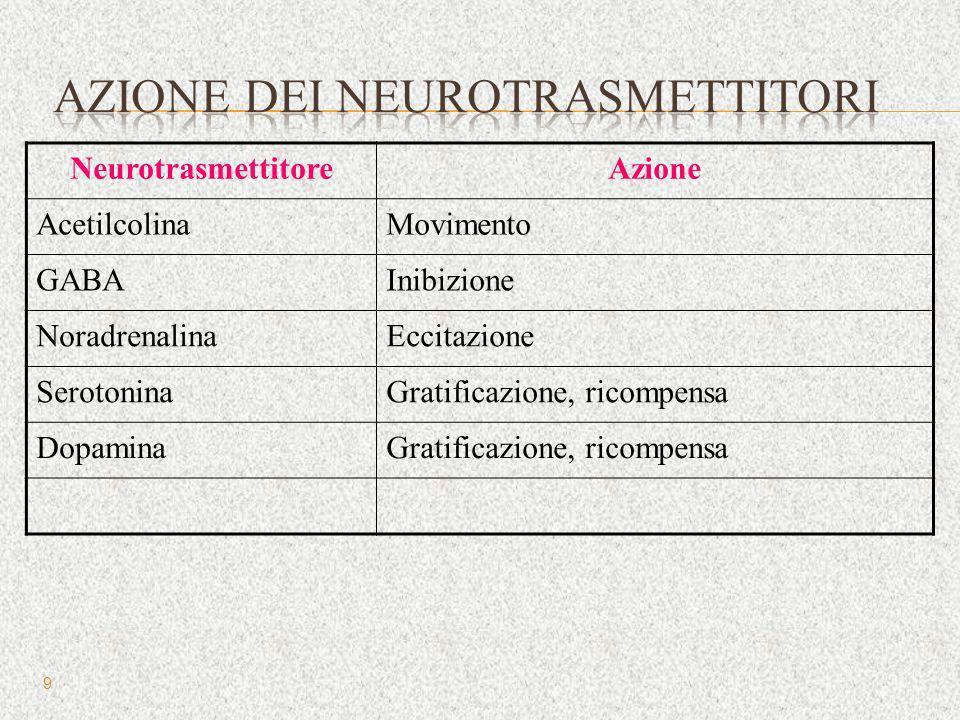 NeurotrasmettitoreAzione AcetilcolinaMovimento GABAInibizione NoradrenalinaEccitazione SerotoninaGratificazione, ricompensa DopaminaGratificazione, ri