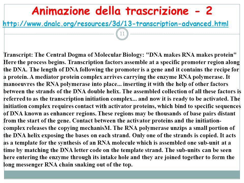 11 http://www.dnalc.org/resources/3d/13-transcription-advanced.html Animazione della trascrizione - 2 Transcript: The Central Dogma of Molecular Biolo