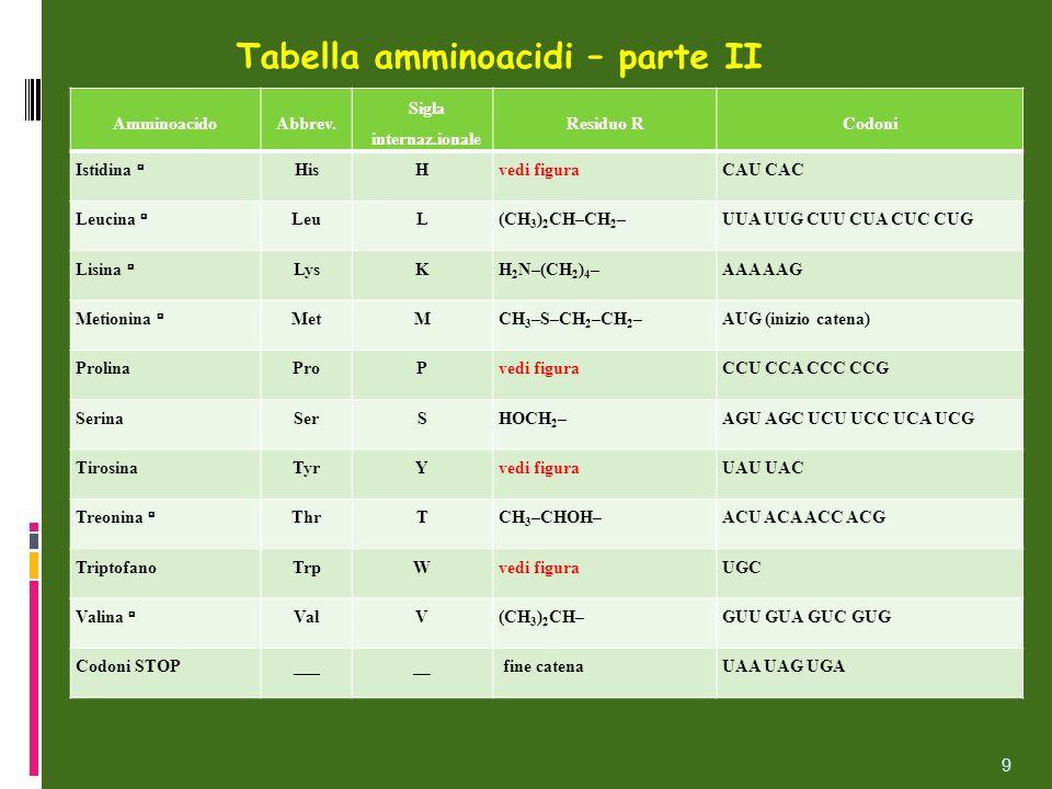 Tabella amminoacidi – parte II AmminoacidoAbbrev. Sigla internaz.ionale Residuo RCodoni Istidina HisHvedi figuraCAU CAC Leucina LeuL(CH 3 ) 2 CH–CH 2
