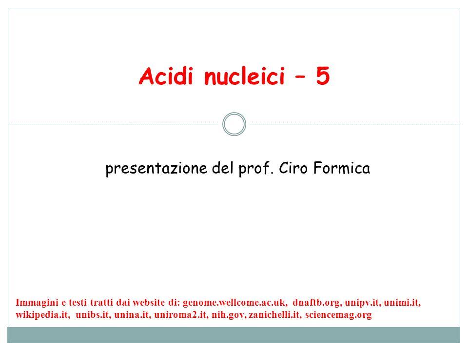 Acidi nucleici – 5 presentazione del prof. Ciro Formica Immagini e testi tratti dai website di: genome.wellcome.ac.uk, dnaftb.org, unipv.it, unimi.it,
