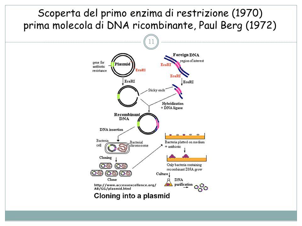 Scoperta del primo enzima di restrizione (1970) prima molecola di DNA ricombinante, Paul Berg (1972) 11