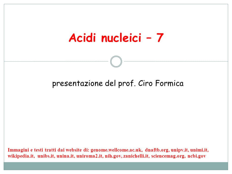 12 Animazione della traduzione http://www.dnalc.org/resources/3d/15-translation-basic.html Transcript: When the RNA copy is complete, it snakes out into the outer part of the cell.