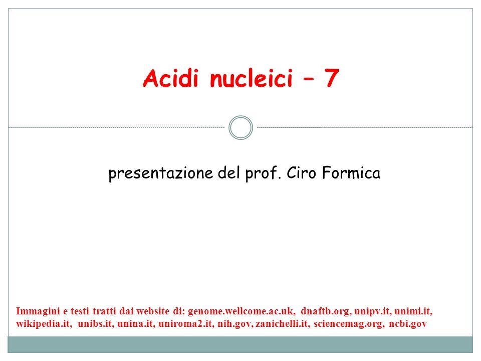Acidi nucleici – 7 presentazione del prof. Ciro Formica Immagini e testi tratti dai website di: genome.wellcome.ac.uk, dnaftb.org, unipv.it, unimi.it,